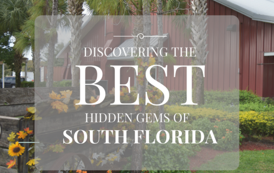 Discovering South Florida:  Bedner's Farm Market, A Unique Roadside Attraction