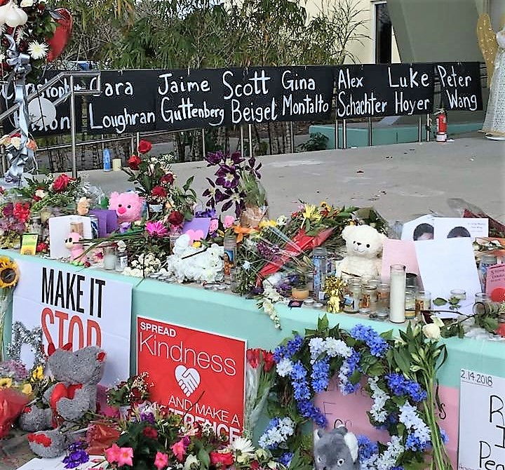 Reflecting on the Parkland Shooting and I am still heartbroken, but most of all I am ANGRY